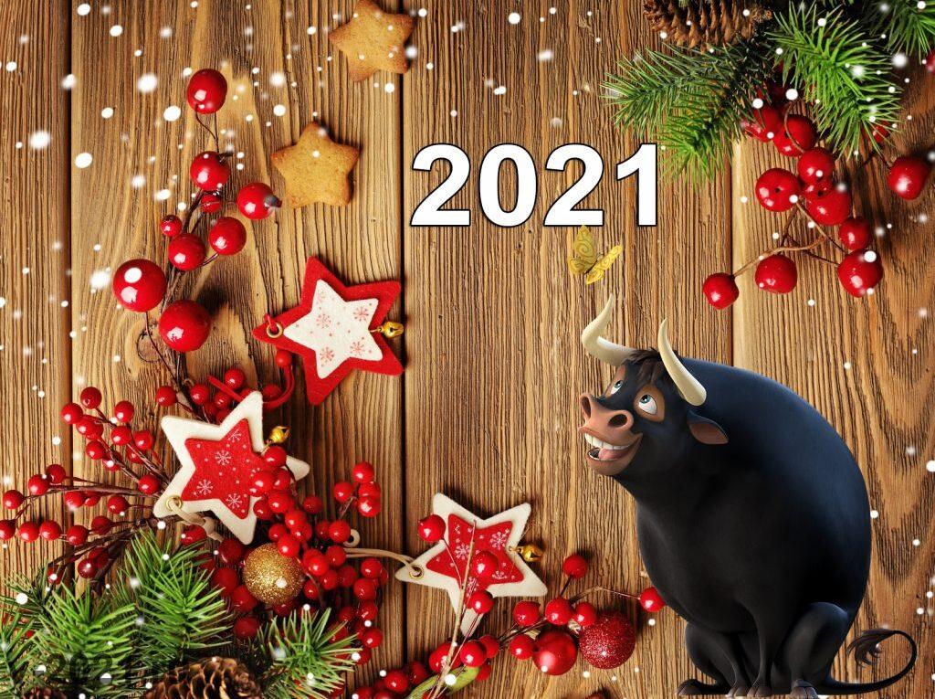 Что готовят на новый 2021 год быка